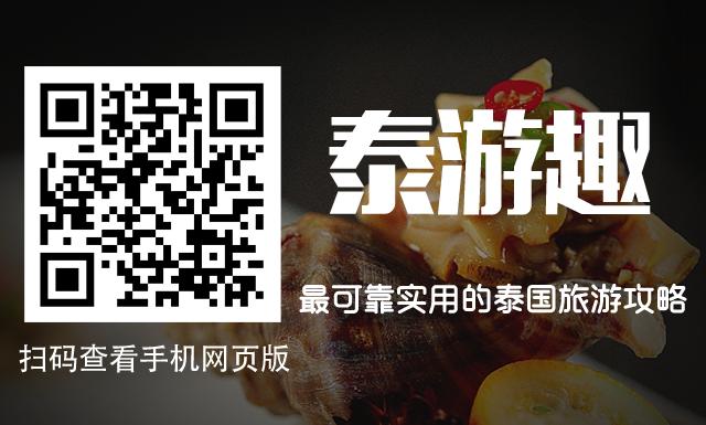 泰游趣手机版网页