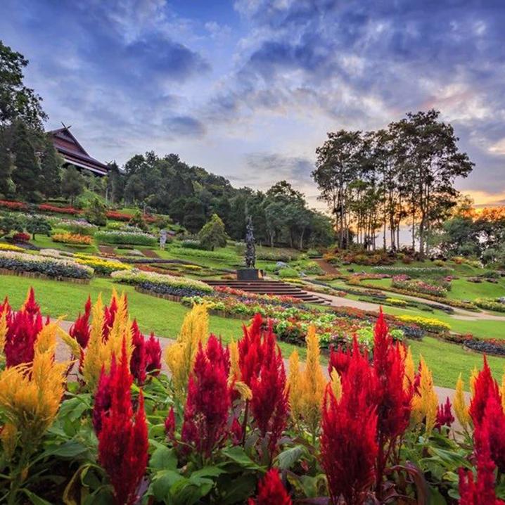 清萊府黎敦山皇太后花园,惊险刺激的林梢步道