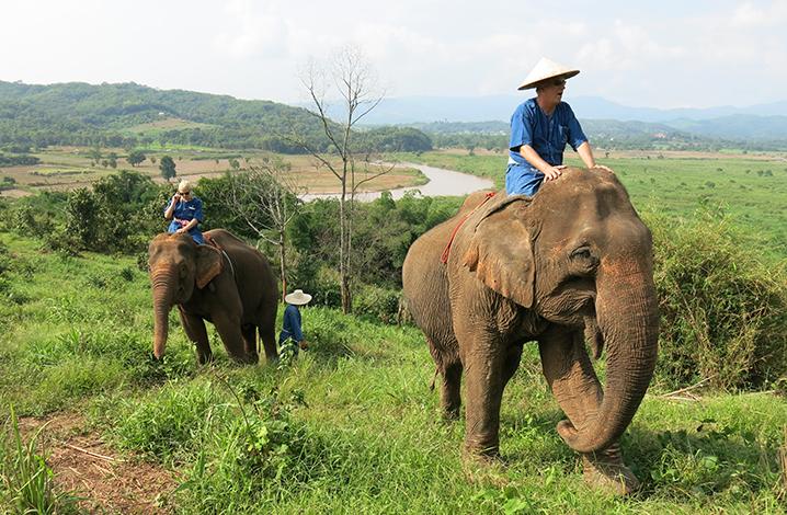 花两万多睡泰国最贵的酒店,竟然是帐篷?